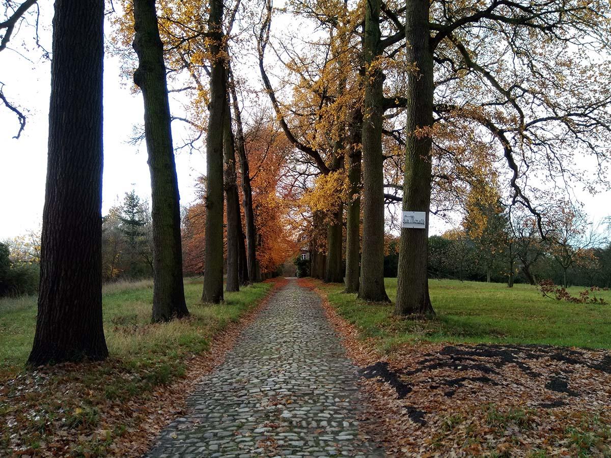 Asse – stedenbouwkundige begeleiding kasteeldomein 'De Morette'